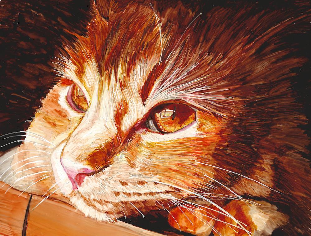 Amber Eyes Pumpkin