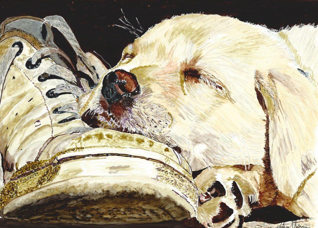 Love My Shoe by Sheryl Williams