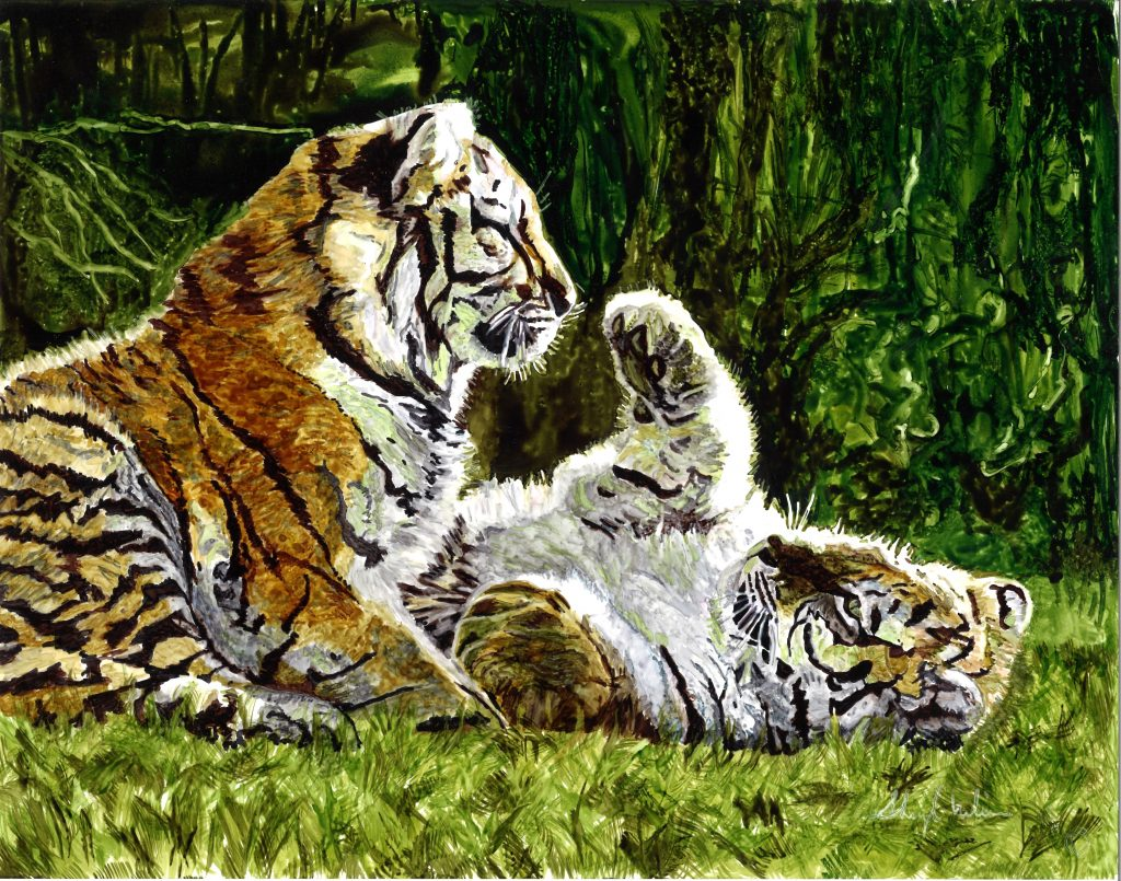 Tiger Cubs Time To Play
