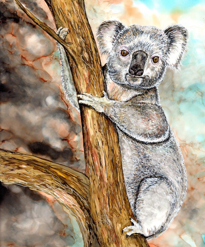 Koala by Andrea Patton